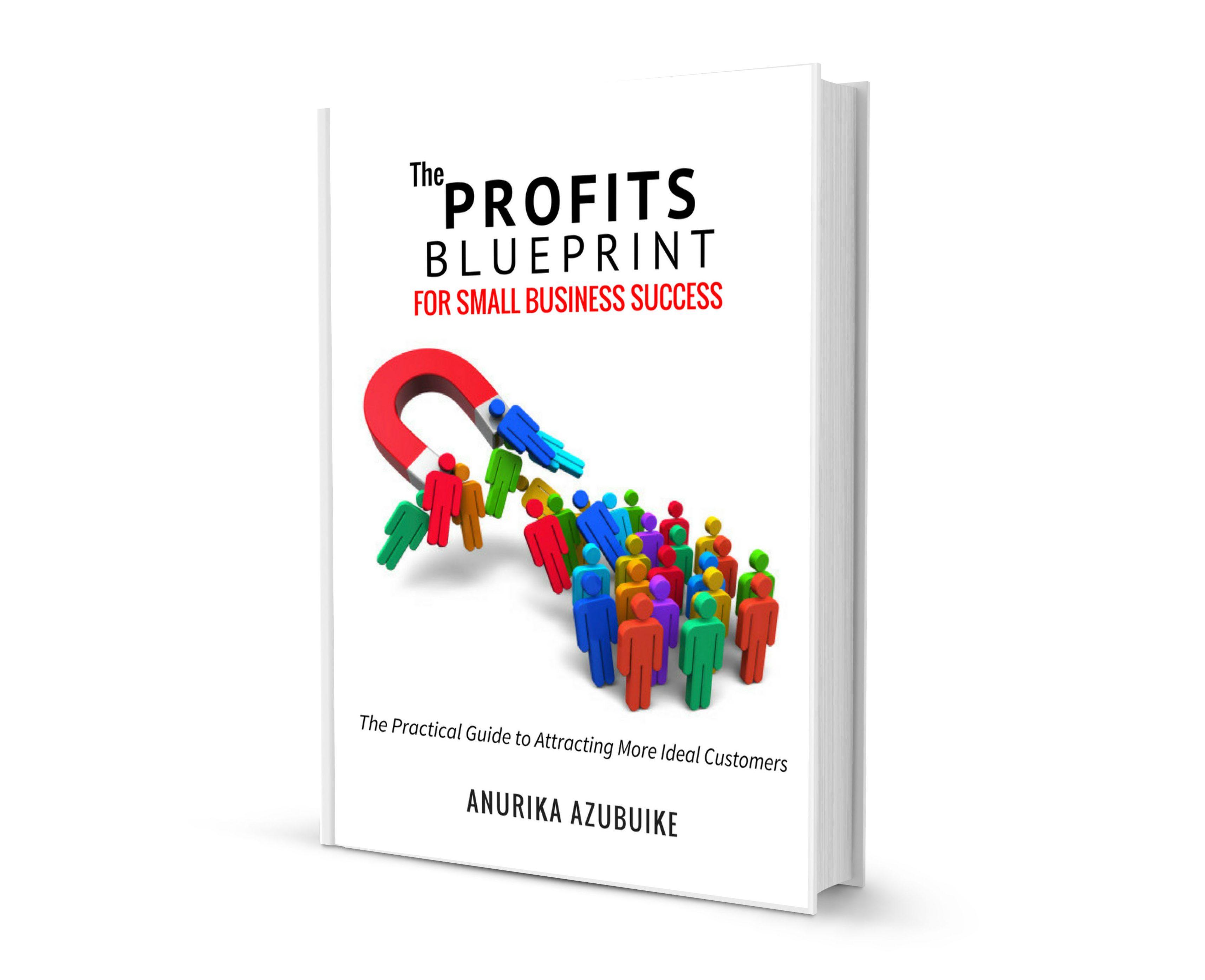 The  Profits Blueprint